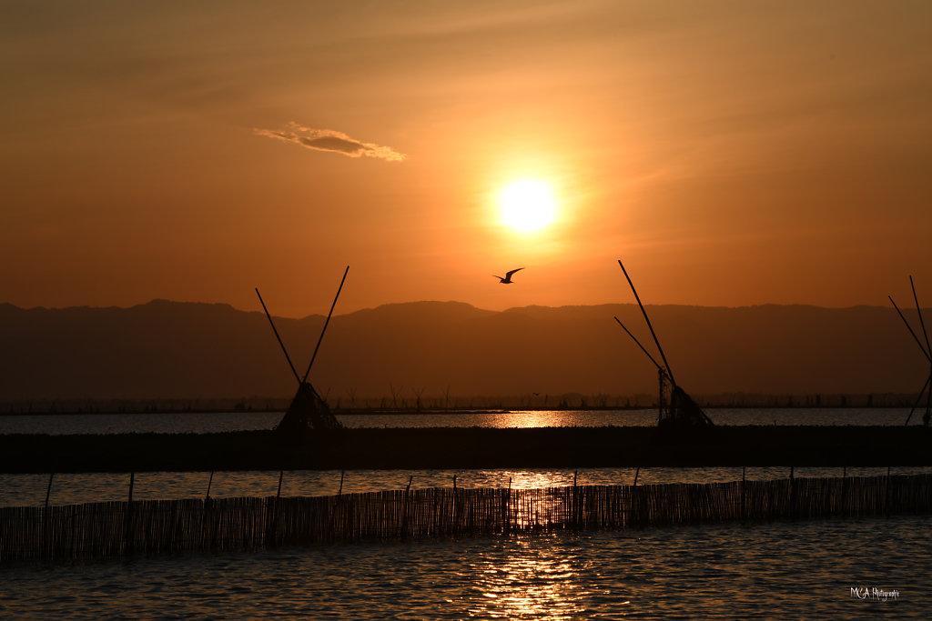 Le lac Tempe